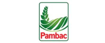 Pambac
